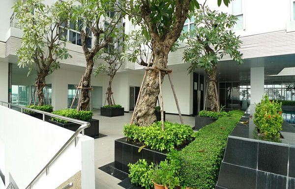 Nurasiri-Grand-Condo-for-sale-garden